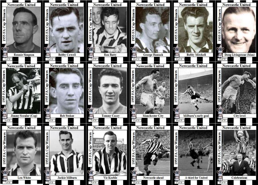 nikolaitradingcards - Football - Newcastle Utd